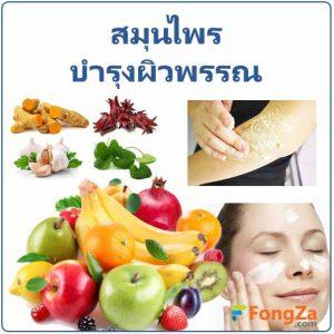 สมุนไพรบำรุงผิวพรรณ สมุนไพรบำรุงผิว สมุนไพรรักษาโรคผิวหนัง สมุนไพรไทยเสริมความงาม