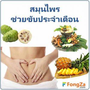 สมุไพรขับประจำเดือน สมุนไพรสำหรับสตรี สมุนไพร สมุนไพรไทย