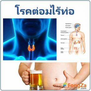 โรคฮอร์โมน โรคต่อมไร้ท่อ โรคระบบต่อมไร้ท่อ โรคเกี่ยวกับฮอร์โมนร่างกาย