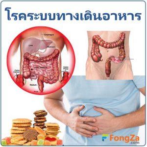 โรคทางเดินอาหาร โรคระบบทางเดินอาหาร โรคเกี่ยวกับทางเดินอาหาร โรคในช่องท้อง
