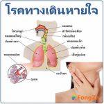 โรคทางเดินหายใจ โรคระบบทางเดินหายใจ โรคเกี่ยวกับการหายใจ โรคที่ระบบทางเดินหายใจ