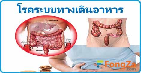 โรคทางเดินอาหาร โรคระบบลำไส้ โรคเกี่ยวกับทางเดินอาหาร