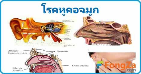 โรคหู โรคคอ โรคจมูก โรคหูคอจมูก