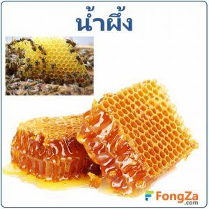 น้ำผึ้ง สรรพคุณของน้ำผึ้ง ประโยชน์ของน้ำผึ้ง โทษของน้ำผึ้ง