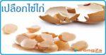 เปลือกไข่ไก่ สมุนไพร สมุนไพรไทย