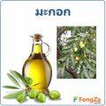 มะกอก สมุนไพร น้ำมันมะกอก ประโยชน์และโทษมีอะไรบ้าง