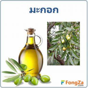 มะกอก สมุนไพร น้ำมันมะกอก สรรพคุณของน้ำมันมะกอก