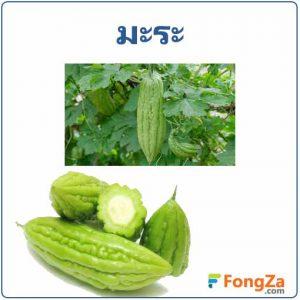 มะระ สมุนไพร พืชสวนครัว สรรพคุณของมะระ